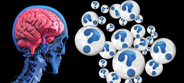 脳に記憶する